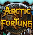Играйте бесплатно в аппарат Arctic Fortune в Вулкан Делюкс