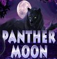 Бесплатный игровой автомат Panther Moon в клубе Вулкан Делюкс